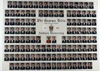Auburn University Composite for 1993